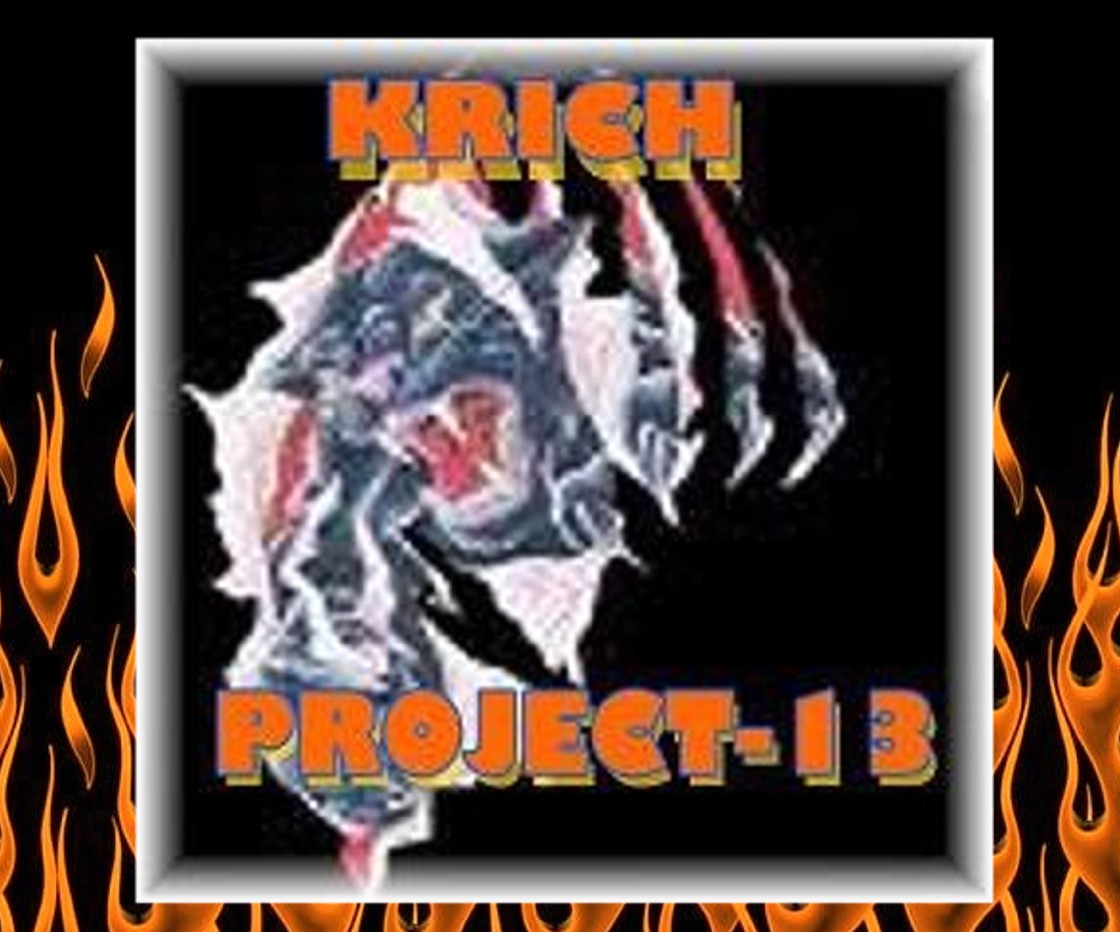 project-13 graphic